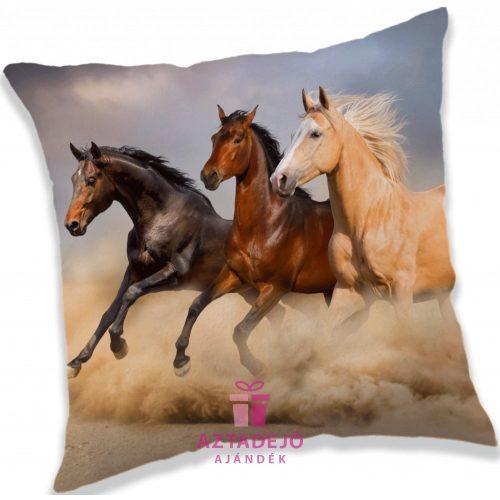 Lovas, The Horses párna 40*40 cm